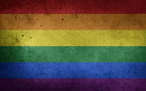 Ombudsman: Lokalne samouprave da izdvoje sredstva za unapređenje položaja LGBTI osoba